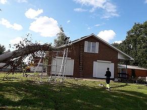 omgevallen boom 2.jpg