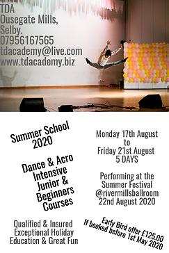 Summer-school-2020-PixTeller.png