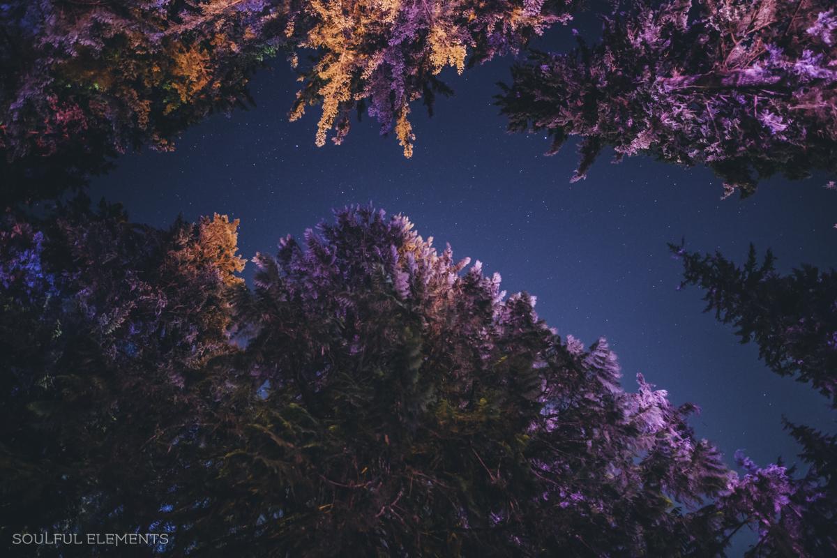 2018-Cascadia (173 of 309)