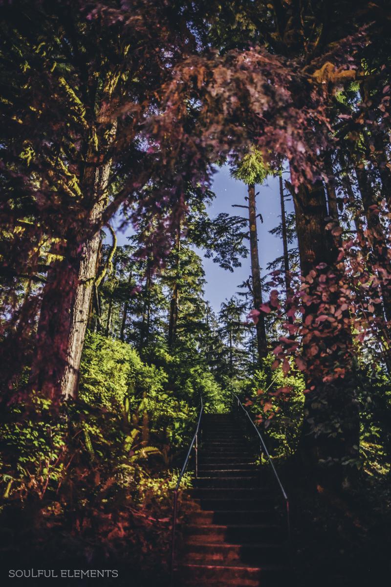 2018-Cascadia (176 of 309)