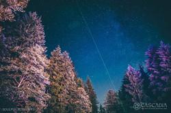 2019_SoulfulElements_Cascadia-18