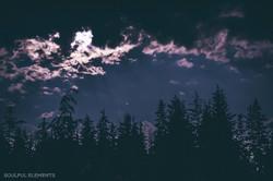 2018-Cascadia (328 of 309)