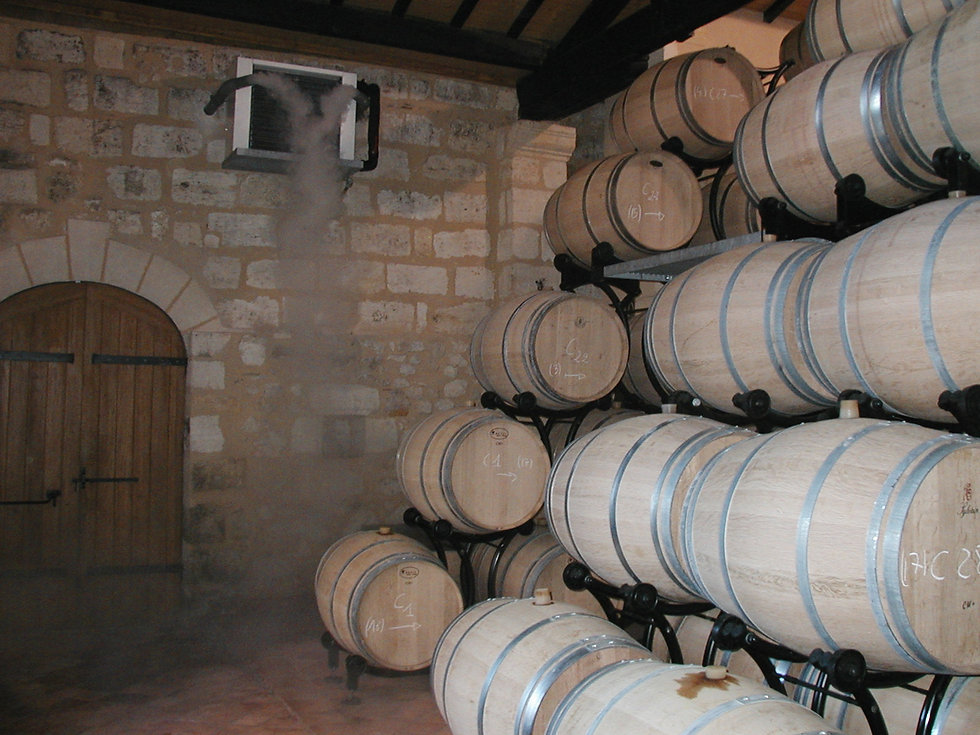Wine Cellar Nebulisation Temperate Contr