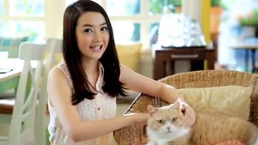 Cream Cat mini program