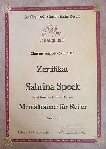 Mentaltrainer für Reiter.jpg