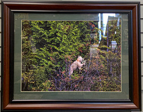 Art of the Valley -184.jpg