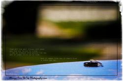 IMG_3869-Edit
