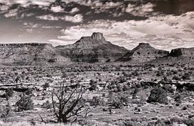 Art of the Valley -190.jpg
