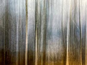 Art of the Valley -167.jpg