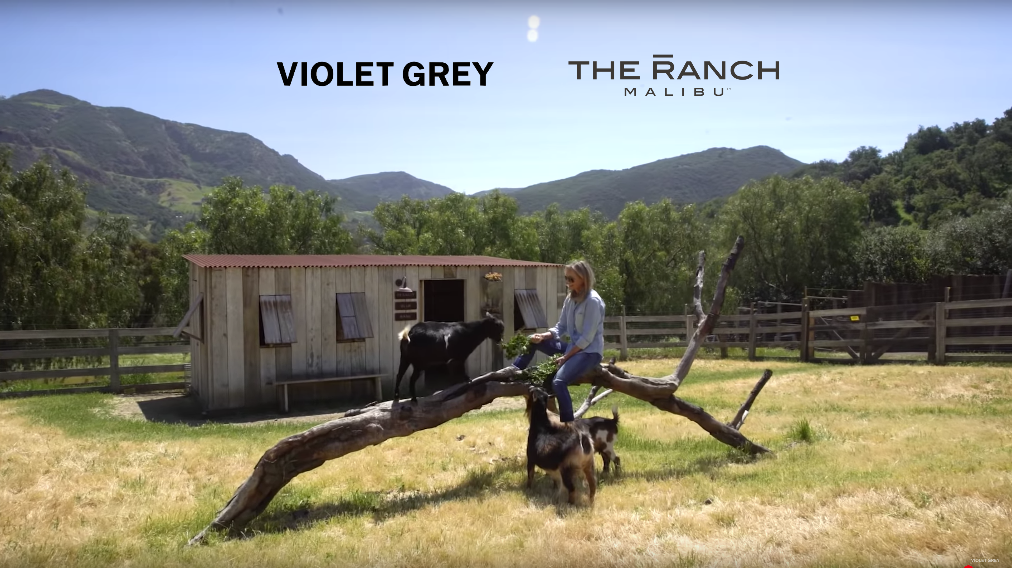 VG The Ranch SSdotCom
