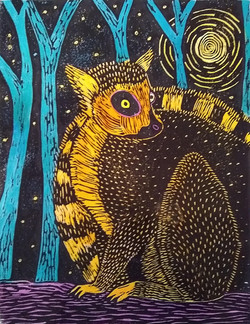Lemur in the Moonlight
