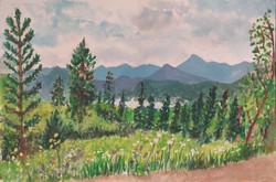 Meadow Creek Trail