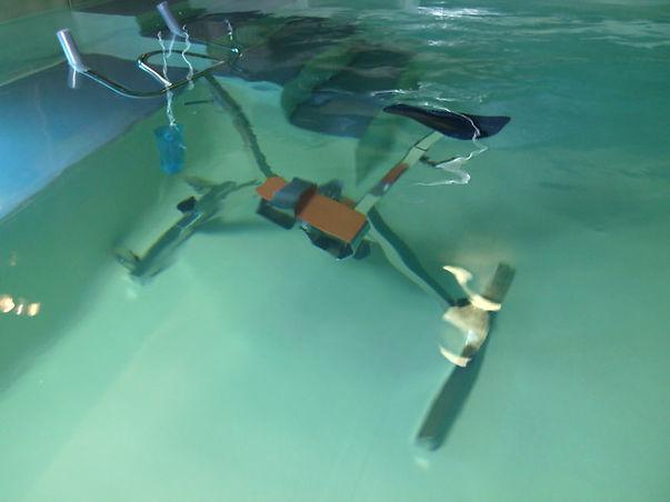 Vélo aquatique