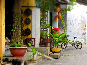 Hoi An Old Town Survival Guide