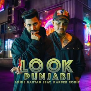 Look Punjabi Full Audio Song