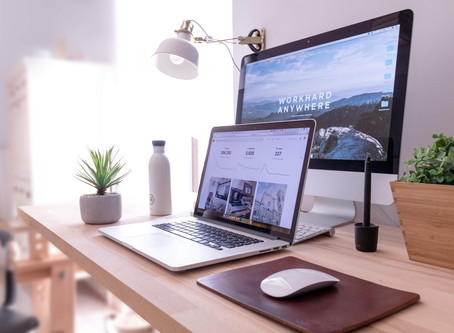 Top 5 Low Maintenance Indoor Plants for Home Office