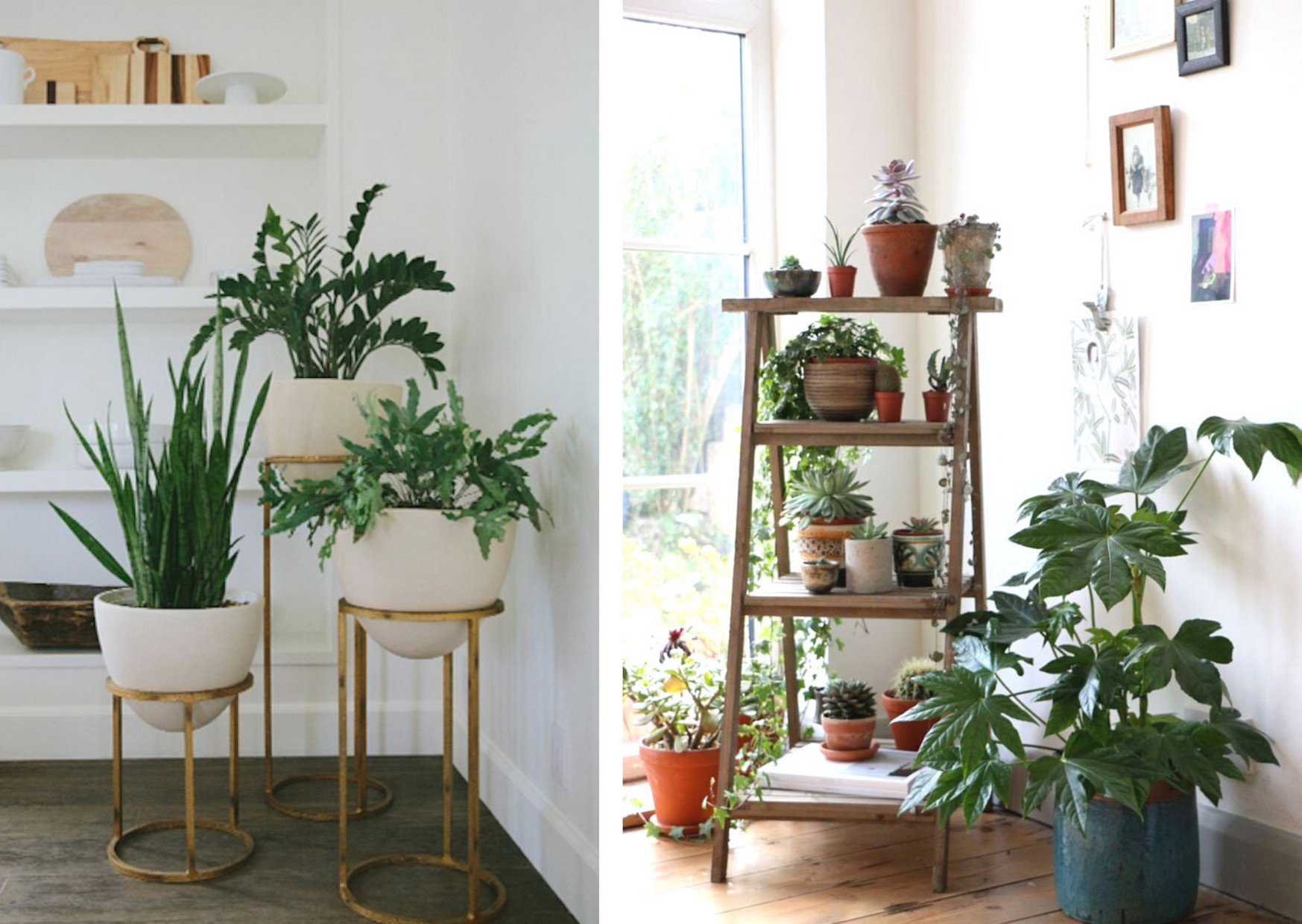 8 Gorgeous Ways To Decorate Your Living Room With Plants