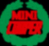 RC Mini