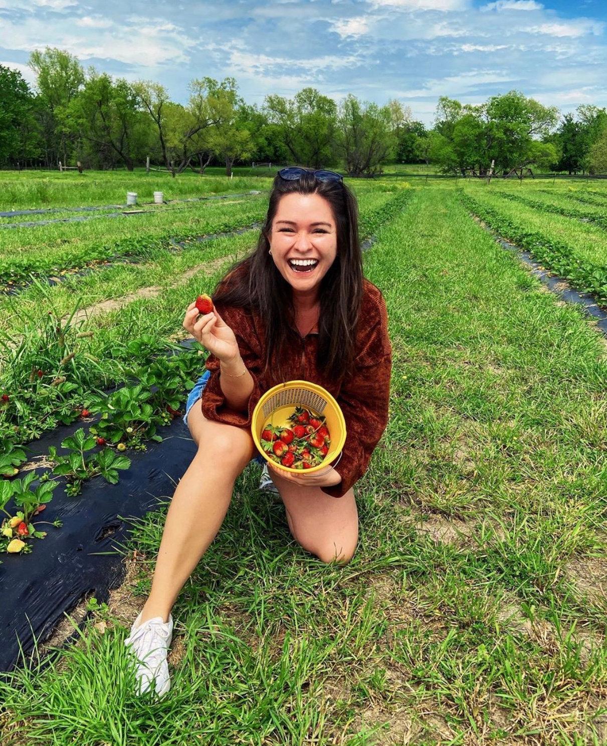 You Pick 'Em Strawberries