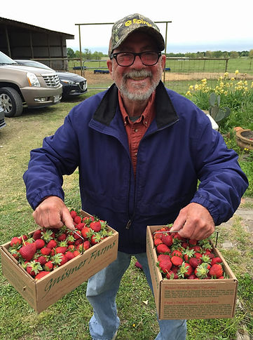 Paul Magedson with Strawberries