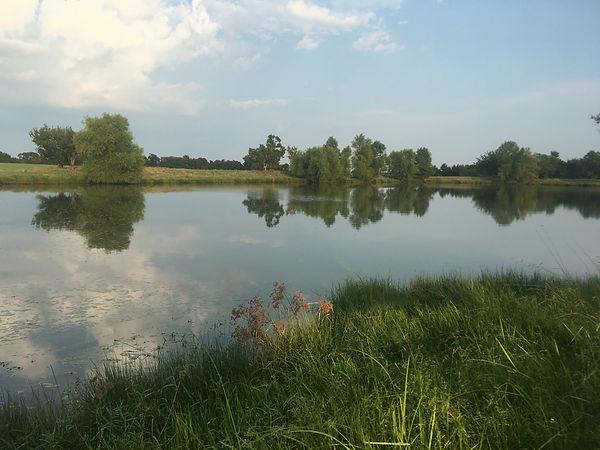 Camping pond