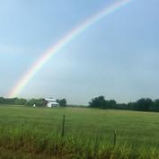 rainbow tiny house