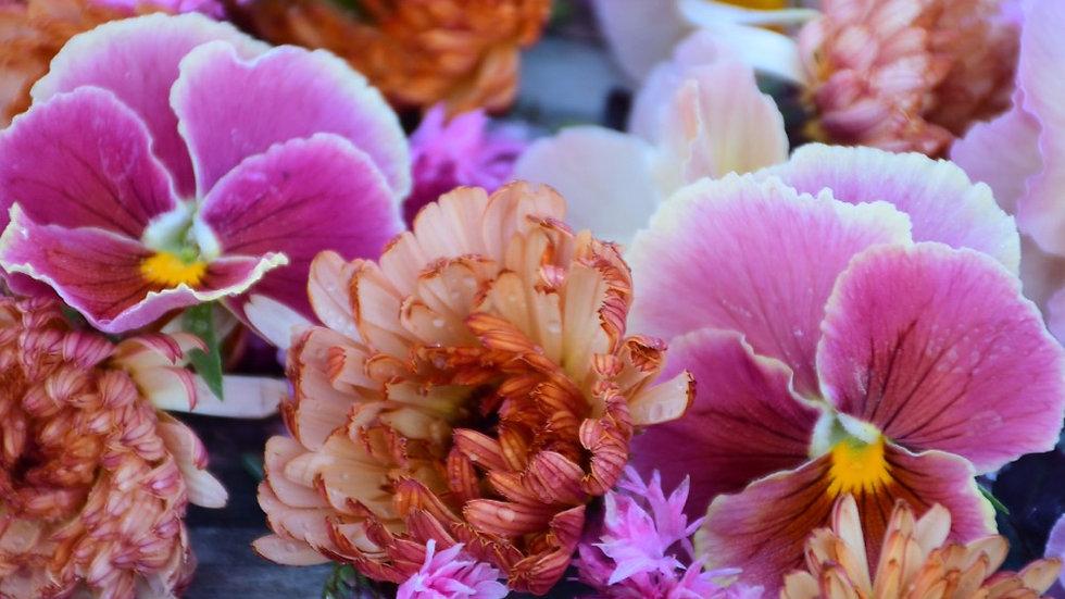 Organically Grown Edible Flowers