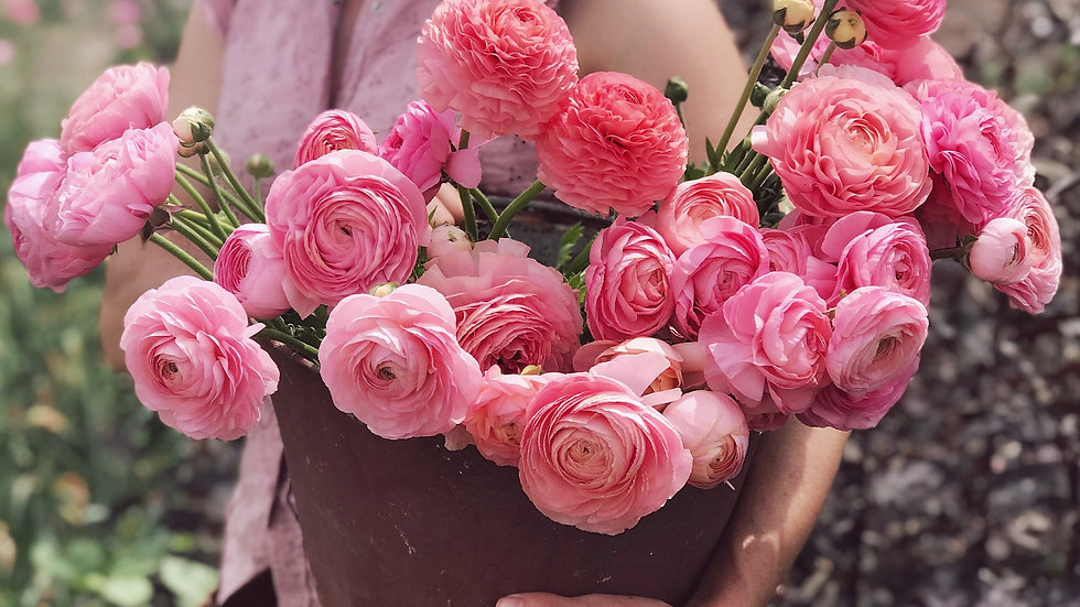SPRING 2020 Flower Subscription- 4 weeks
