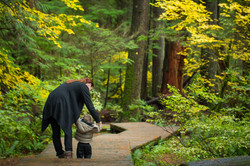 Washington - British Columbia -  PNW - 2017 - Nilas Photography-10