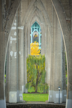 St. Johns Bridge - Cathederal Park -  PNW - 2017 - Nilas Photography-19