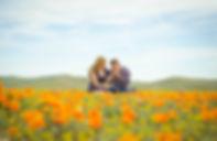 Lancaster - California Poppy Reserve -Te