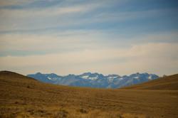 California - Oregon - Bristlecone Pine - Mono Lake -  PNW - 2017 - Nilas Photography-15