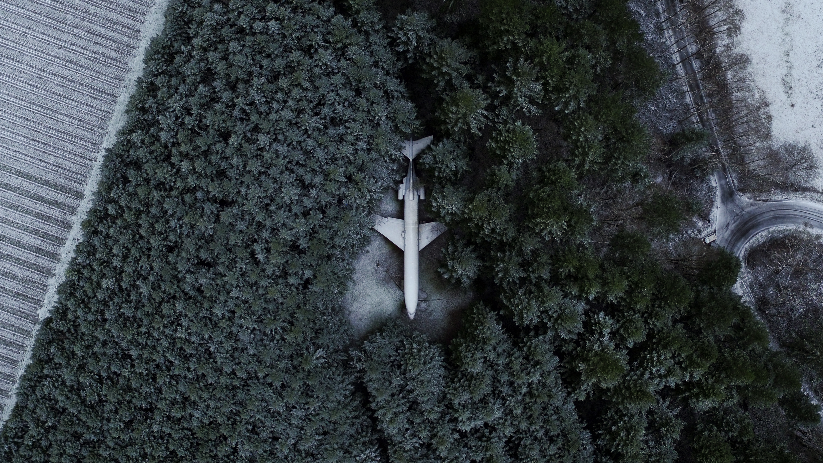 Plane Home - Hillsboro - Oregon -  Nilas
