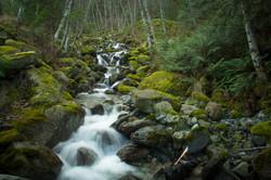 Canada December 2017 - Nilas Photography-3