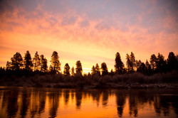 California - Oregon - Bristlecone Pine - Mono Lake -  PNW - 2017 - Nilas Photography-21