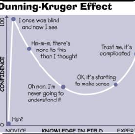 Oh No! Dunning Kruger effect bringing down team motivation.