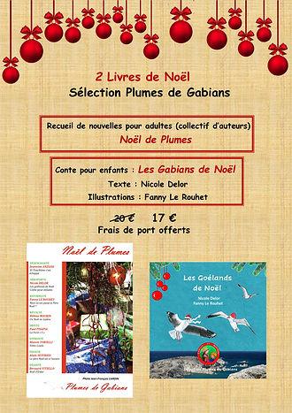 affiche noel promo livres 2 02122020.jpg