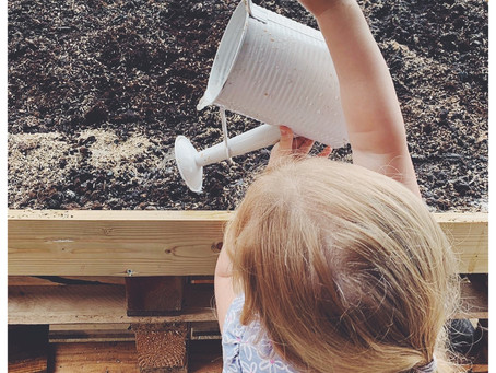Back to the Garden Childcare in Broadheath, Altrincham: Summertime in our beautiful day nursery