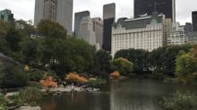 פארקים | מעל ומתחת