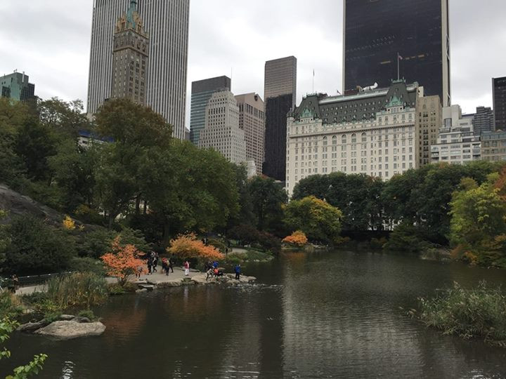 Fall in NY, The Plaza Hotel