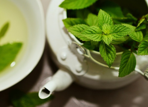 Mint: Much More Than Gum