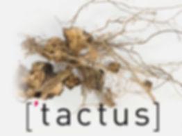 tactus_website_1920x1080-2_edited.jpg