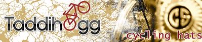 taddihogg logo.png