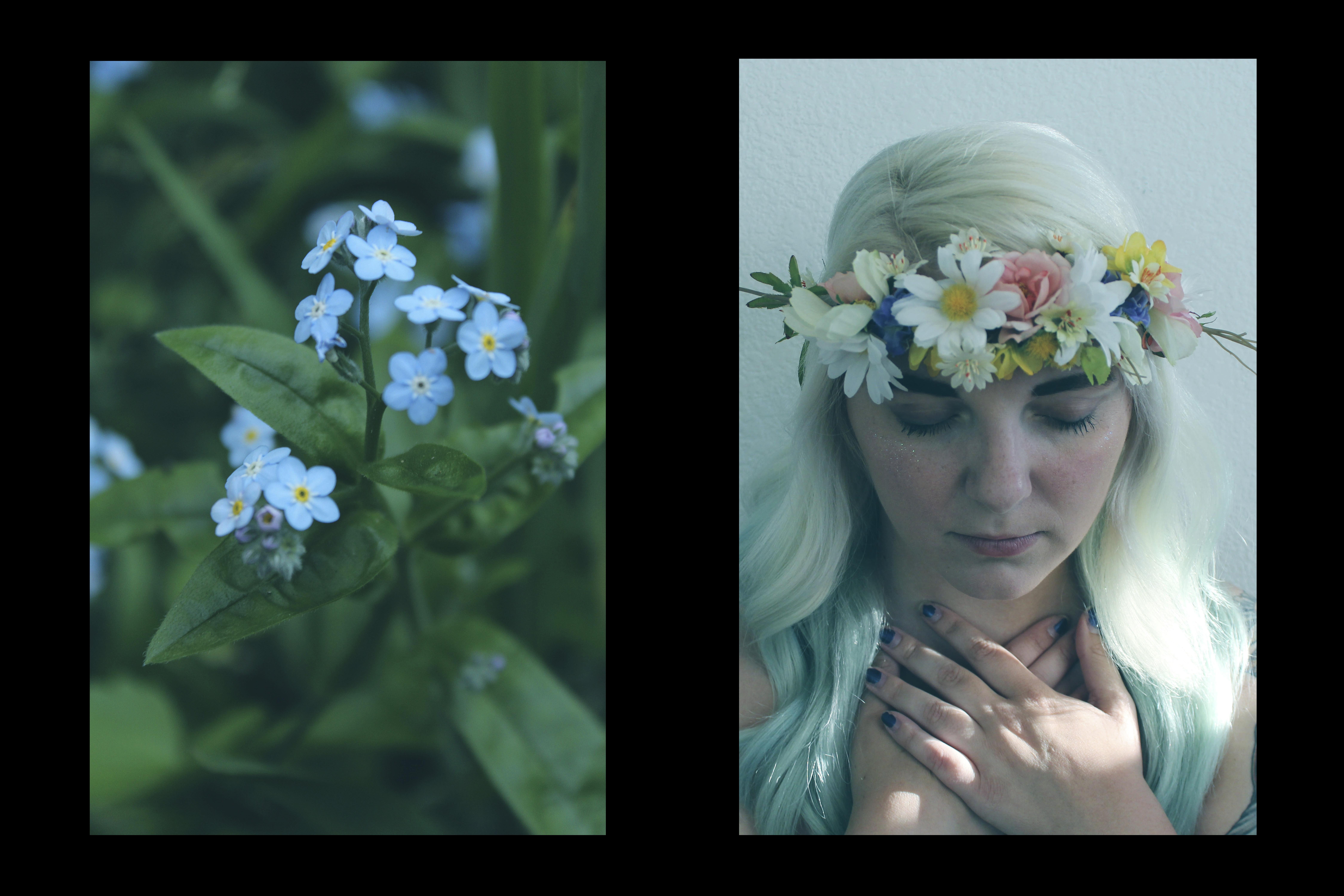 Fairy Nature FINAL3
