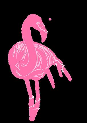 PinkFlamingo.png