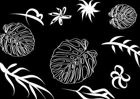 shapes in nature-04 editado.jpg