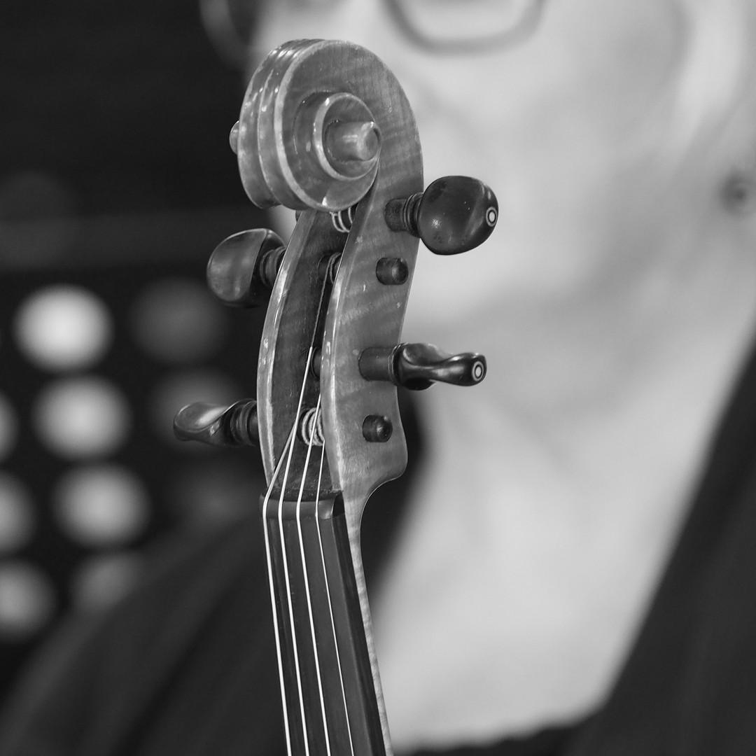 photo by Zenio Lapka Oct 2017 Orchestra-