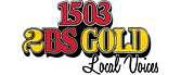 2BS Gold Logo.png