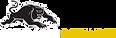 Panthers Bathurst Logo.png