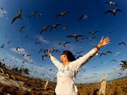 הרצאות מסע - טניה רמניק באי הציפורים